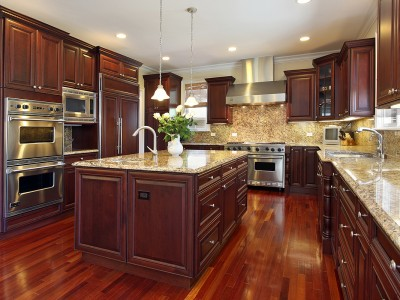 luxury_kitchen_luxury_tampa_real_estate